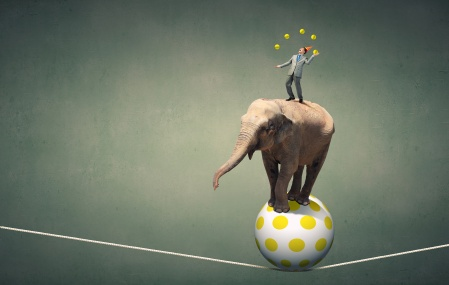 tight rope ball elephant man juggling agility.jpeg